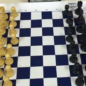 Tabuleiro de xadrez - Bidim